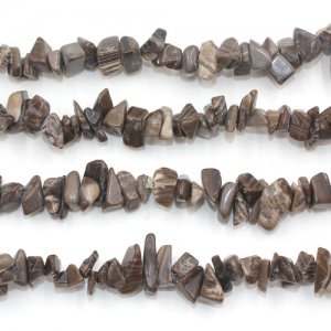 Petrified Wood Bead chipGemstone Chips, 5mm to 10mm, Hole:1mm, Length:Approx 35 Inch